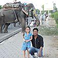 Rajasthan 460